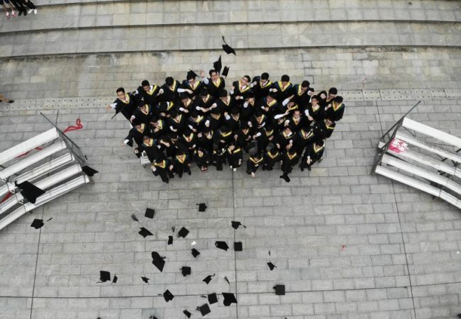 diploma-online_800x600