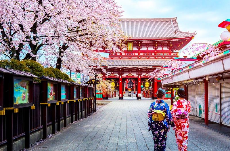 japani-tokio-temppeli-geishat-ss_800x525